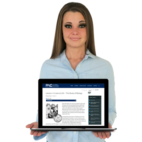 Online Interactive Curriculum