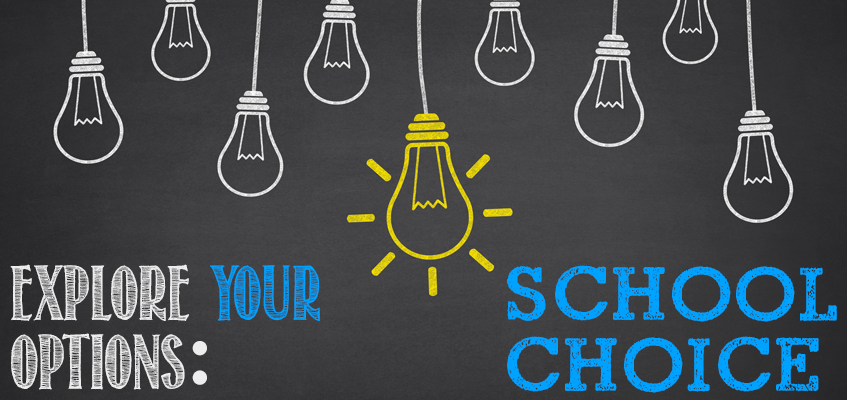 What is School Choice?